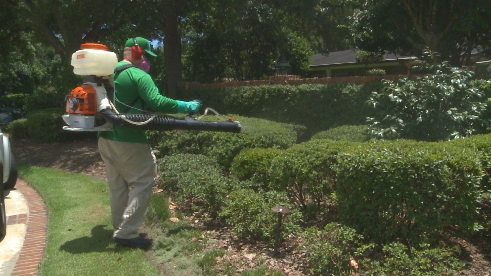 Spraying Your Yard To Eliminate Mosquitoes
