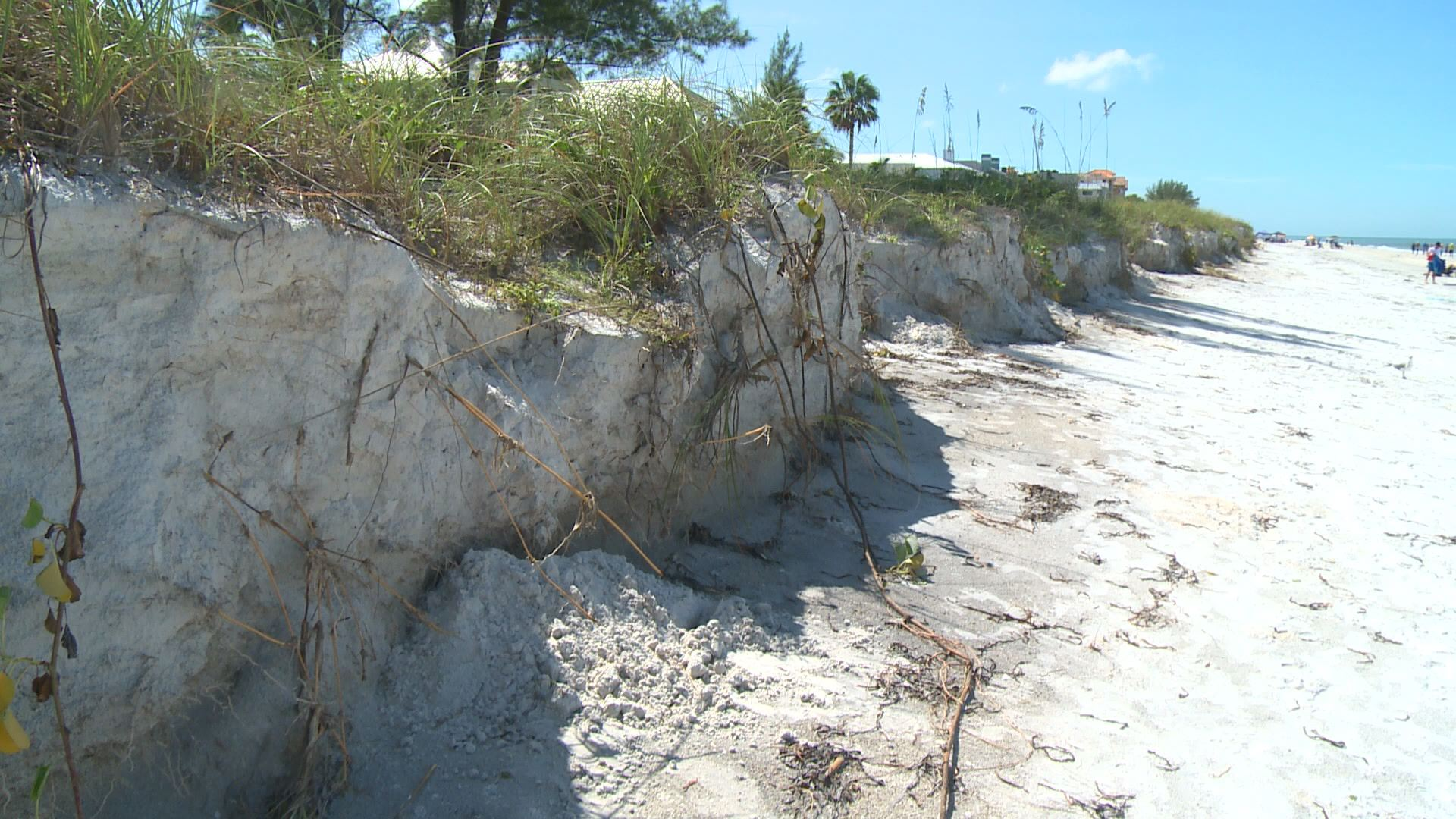 Hermine causes major erosion along pinellas county beaches for Landscaping rocks pinellas county