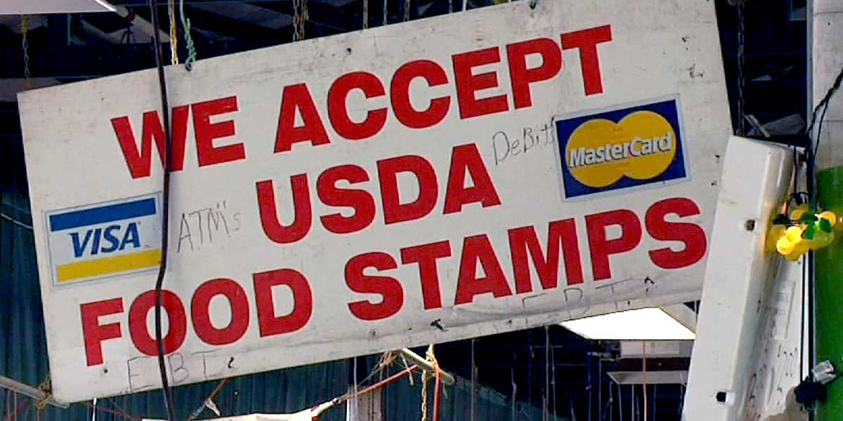 Food Stamps For Florida Seniors