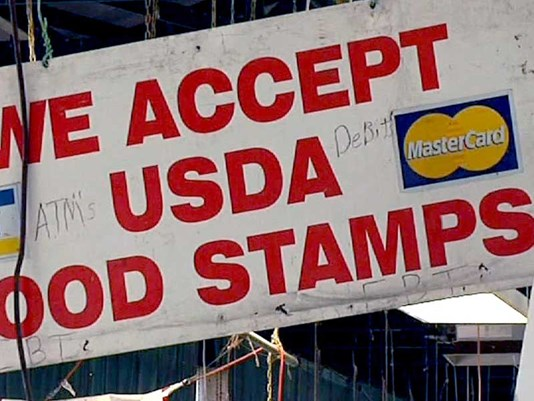 Snap Food Stamps Tampa Florida